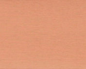 Chintz 88 Terracotta beige